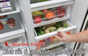 Cach-sua-tu-lanh-khong-lanh-ngan-duoi-1