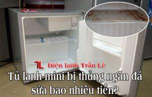 Tu-lanh-mini-bi-thung-ngan-da-sua-bao-nhieu-tien-1