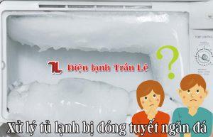 Xu-ly-tu-lanh-bi-dong-tuyet-ngan-da-1